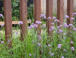 Garden Screen And Privacy Ideas