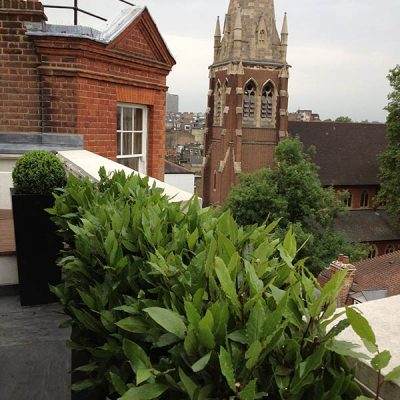 Wrap Around Roof Terrace Chelsea