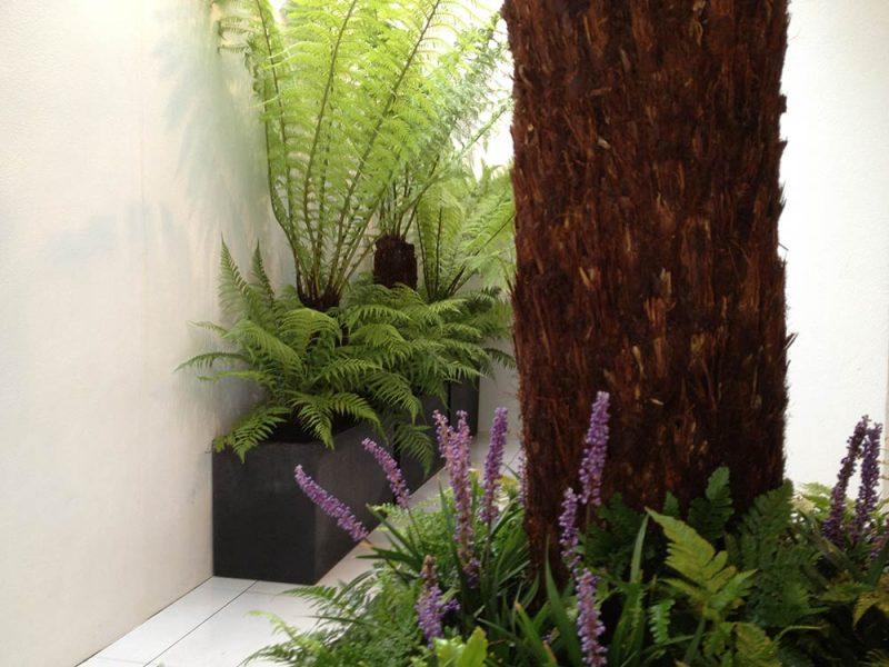 Basement Garden Design Fulham