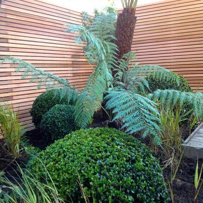 Entertaining Garden Barnes